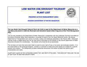 Acacia macrostachya : Low Water Use Drought Tolerant Plant List