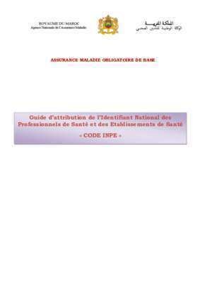 Autorisation d exercer : Guide d attribution de l Identifiant National des