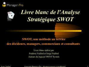 100 critres swot : SWOT System Manager-Pro