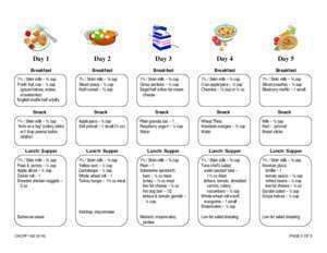 15 page 182 : Sample Child Care Menus CACFP-182 New York State