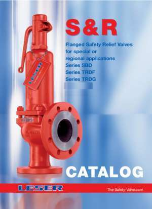 Flanged Safety Relief Valves for special or regional