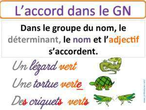 Accord gn : L accord(dans(le(GN( ekladata com
