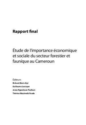 Analyse comparative genre : Rapport final minfof cm