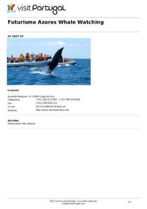 Futurismo Azores Whale Watching - Visit Portugal